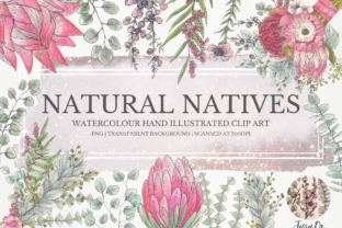 Print on Demand: Australian Natives Clipart Set Graphic Illustrations By Jessaox