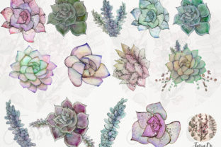 Print on Demand: Sweet Succulents Clip Art Set Graphic Illustrations By Jessaox 2