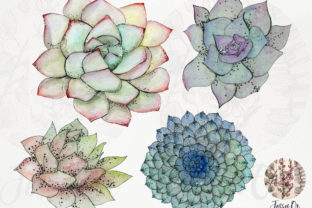 Print on Demand: Sweet Succulents Clip Art Set Graphic Illustrations By Jessaox 3