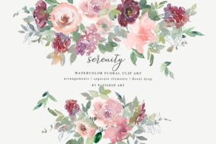 Watercolor Blush Burgundy Floral Clipart Graphic Illustrations By Patishop Art
