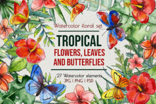 Tropical Exotic Leaves & Flowers Graphic Illustrations By AlenserArt