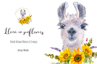Print on Demand: Watercolor Llama Clipart - Sublimation Graphic Illustrations By ElenaZlataArt