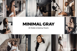 20 Minimal Gray Lightroom Presets and LU Graphic Actions & Presets By SparkleStock