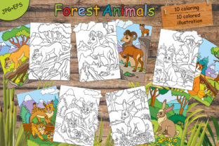 Coloring for Children Forest Animals Graphic Coloring Pages & Books Kids By Alinart