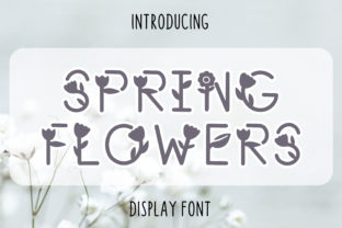 Print on Demand: Spring Flowers Display Font By Pila Studio