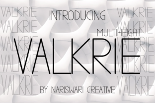 Print on Demand: Valkrie Sans Serif Font By Nariswari Creative