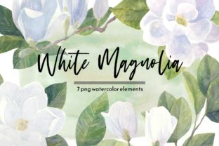 Print on Demand: White Magnolia Watercolor Floral Set Graphic Illustrations By roselocket