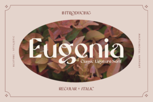 Print on Demand: Eugenia Display Font By Bekeen.co
