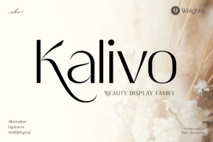 Print on Demand: Kalivo Sans Serif Font By ekahermawan