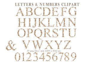 Print on Demand: Leopard Modern Boho Alphabet Clipart Graphic Objects By Tiana Geo