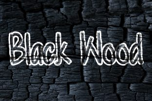 Print on Demand: Black Wood Display Font By darully.creator