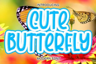 Print on Demand: Cute Butterfly Display Font By ABBAsalam