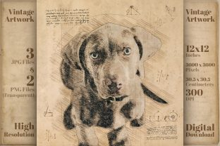 Print on Demand: Dog Weimaraner Cute Retro Drawing Sketch Graphic Illustrations By Vintage 12by12