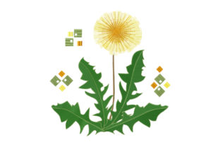 Print on Demand: Spring Yellow Dandelion Spring Embroidery Design By EmbArt