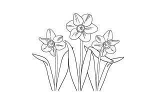 Daffodils Line Drawing Nature & Outdoors Craft Cut File By Creative Fabrica Crafts