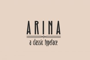 Print on Demand: Arina Sans Serif Font By iordache.ionut