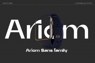 Print on Demand: Ariom Sans Serif Font By S6 Foundry