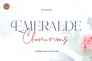 Print on Demand: Emeralde Chamerions Script & Handwritten Font By almarkhatype