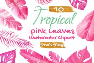 Tropical Palm Leaf Pink Watercolor Graphic Objects By artpanda2018 1