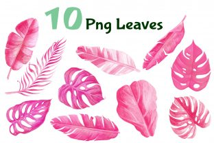 Tropical Palm Leaf Pink Watercolor Graphic Objects By artpanda2018 2