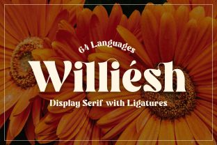 Print on Demand: Williesh Serif Font By almarkhatype