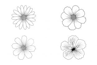 Print on Demand: Flower Line Art Set Vector. Illustration Graphic Illustrations By Graphicyes