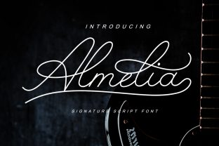 Print on Demand: Almelia Script & Handwritten Font By indrotanwijoyo