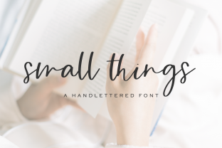 Print on Demand: Small Things Script & Handwritten Font By BeckMcCormick