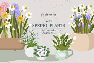 Spring Indoor Plants | Part 3 Graphic Illustrations By lena-dorosh