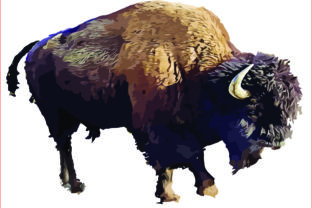 Buffalo Clipart, Sublimation Graphics, Graphic Graphic Templates By AlaBala