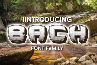 Print on Demand: Bach Decorative Font By vladimirnikolic