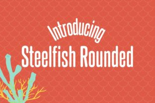 Print on Demand: Steelfish Rounded Sans Serif Font By Typodermic