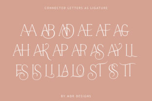 Print on Demand: Stories Serif Font By mdrdesigns99 7
