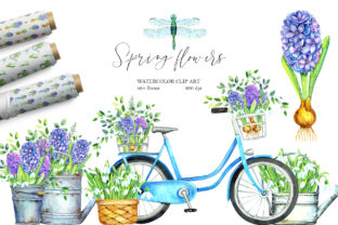 Spring Flowers Hyacinths Graphic Illustrations By evgenia_art_art