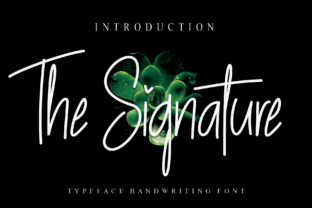 Print on Demand: The Signature Script & Handwritten Font By Creativewhitee