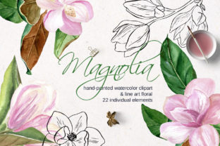 Pink Magnolia Watercolor, Lineart Flower Graphic Illustrations By lena-dorosh