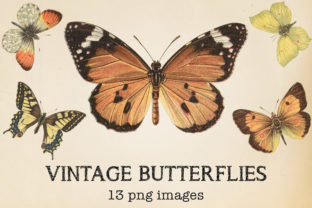 Print on Demand: Vintage Butterflies Clipart Graphic Objects By northseastudio