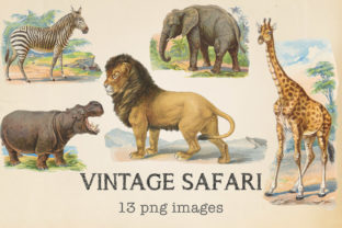 Print on Demand: Vintage Safari Animals Graphic Objects By northseastudio
