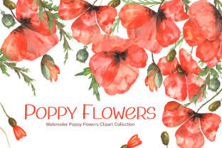Print on Demand: Watercolor Poppy Flowers Collection Graphic Illustrations By tanatadesign