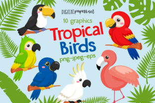 Print on Demand: Tropical Birds Clipart Set Graphic Illustrations By DigitalPapers