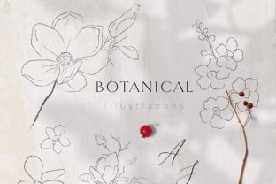 Print on Demand: Line Drawing Botanicals, Plants. Brushes Graphic Graphic Templates By Olya.Creative