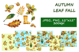 Print on Demand: Autumn Leaf Fall Collection Graphic Patterns By LisArt