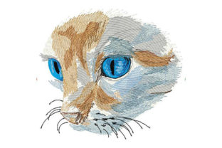 Print on Demand: Cat with Deep Blue Eyes Cats Embroidery Design By Dizzy Embroidery Designs