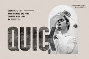 Print on Demand: Quick Display Font By SilverStag