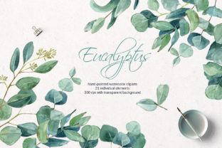 Watercolor Eucalyptus Clipart Graphic Illustrations By lena-dorosh