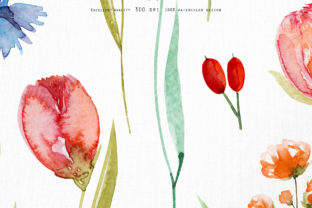 Wild Flowers Watercolor Collection Graphic Illustrations By HappyWatercolorShop 12