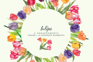 Watercolor Tulip Clipart Collection Graphic Illustrations By Patishop Art
