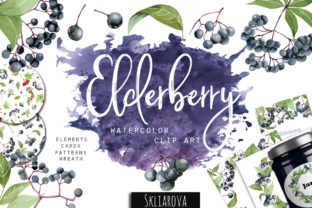 Elderberry Clipart Graphic Illustrations By HappyWatercolorShop