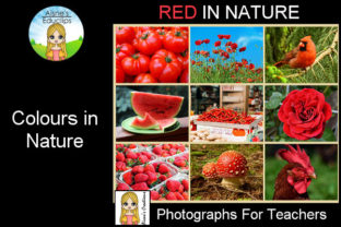 Print on Demand: Colours in Nature - Red Graphic Teaching Materials By Aisne Educlips