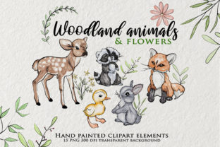 Print on Demand: Watercolor Woodland Animals Clipart Graphic Illustrations By Novart